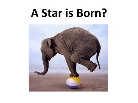 A Star is Born?. Teenager? Definition: A mammal found extensively throughout the planet, often clustered in groups in front of television sets...