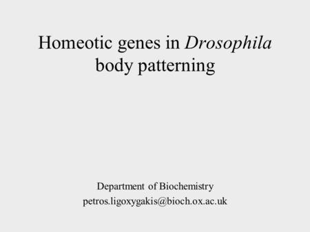 Homeotic genes in Drosophila body patterning Department of Biochemistry