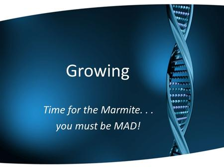 Growing Time for the Marmite... you must be MAD!.
