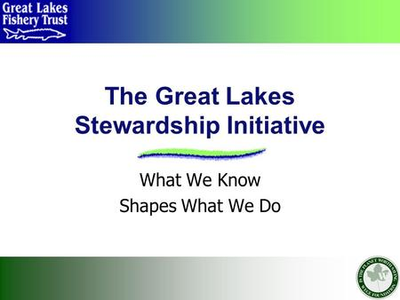 The Great Lakes Stewardship Initiative What We Know Shapes What We Do.