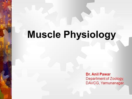 Muscle Physiology Dr. Anil Pawar Department of Zoology, DAVCG, Yamunanagar.