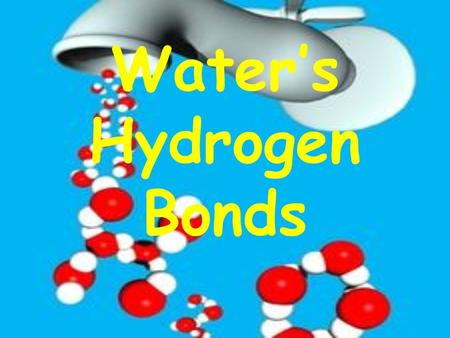 Water's Hydrogen Bonds. ONE molecule of water Draw what you think a water molecule looks like! We know that… ONE molecule of water is made up of 2H's.
