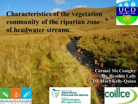 Characteristics of the vegetation community of the riparian zone of headwater streams Cormac Mc Conigley Dr. Heather Lally Dr. Mary Kelly-Quinn.