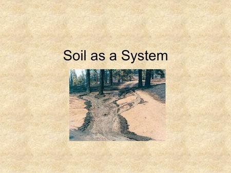 Soil as a System. Soil formation is slow and complex Parent material—base geological material in a particular location, can include lava or volcanic ash,