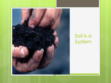 Soil is a System. How do soils form? Mineralization: decomposition or oxidation of the chemical compounds in organic matter into plant-accessible forms.