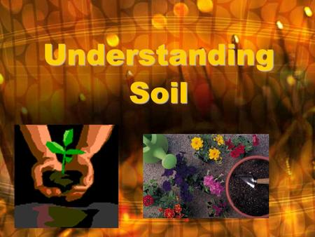 Understanding Soil. What is soil? Top layer of the Earth's surface Created when rocks, dead animals and plants break down into tiny pieces Rocks, animals.