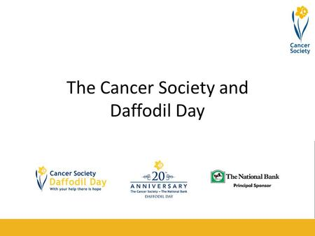 The Cancer Society and Daffodil Day. What is Daffodil Day? Daffodil Day is the day put aside for people all over New Zealand to help raise money for the.