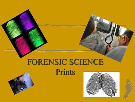 1 FORENSIC SCIENCE Prints 2 Prints Dactyloscopy: the study of fingerprints l Making Prints –Rolling prints –Modus Operandi--primary identification number.