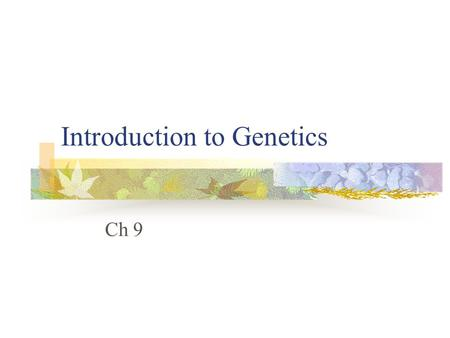Introduction to Genetics Ch 9. The Work of Gregor Mendel A. The branch of biology that studies heredity is called genetics. B. Gregor Mendel is considered.