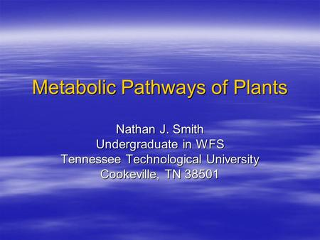 Metabolic Pathways of Plants Nathan J. Smith Undergraduate in WFS Tennessee Technological University Cookeville, TN 38501.