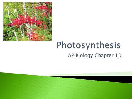 "AP Biology Chapter 10.  ""photo""=light  ""synthesis""=to build  Photosynthesis is the process that converts solar energy to chemical energy.  Directly."