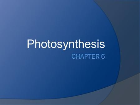 Photosynthesis. What is it?  Photosynthesis is the process of converting light energy to chemical energy and storing it in the bonds of sugar.  Plants.