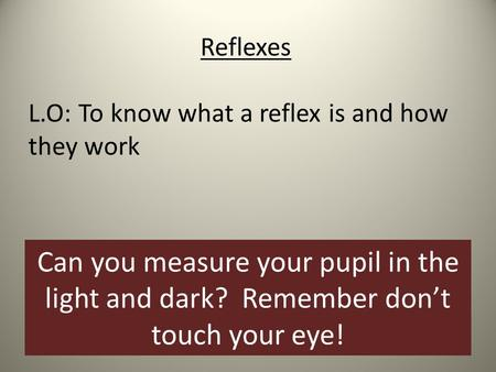 Reflexes L.O: To know what a reflex is and how they work