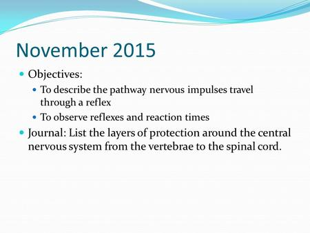 November 2015 Objectives: To describe the pathway nervous impulses travel through a reflex To observe reflexes and reaction times Journal: List the layers.