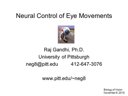 Neural Control of Eye Movements