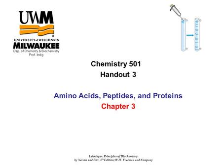 Chemistry 501 Handout 3 Amino Acids, Peptides, and Proteins Chapter 3 Dep. of Chemistry & Biochemistry Prof. Indig Lehninger. Principles of Biochemistry.