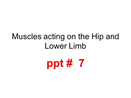 Muscles acting on the Hip and Lower Limb