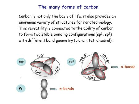 The many forms of carbon Carbon is not only the basis of life, it also provides an enormous variety of structures for nanotechnology. This versatility.