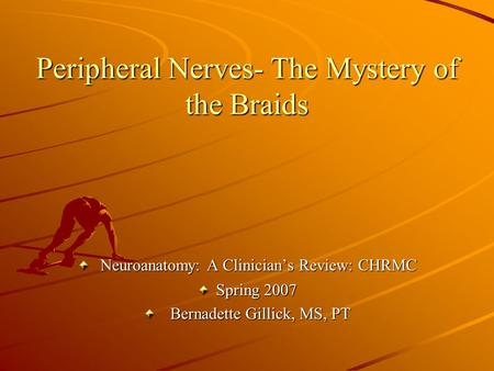 Peripheral Nerves- The Mystery of the Braids Neuroanatomy: A Clinician's Review: CHRMC Neuroanatomy: A Clinician's Review: CHRMC Spring 2007 Bernadette.