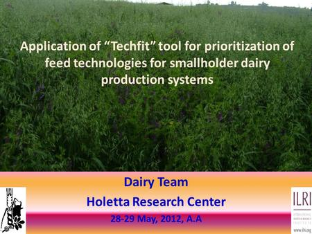 "Dairy Team Holetta Research Center 28-29 May, 2012, A.A Application of ""Techfit"" tool for prioritization of feed technologies for smallholder dairy production."