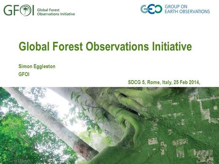16.01.2016 Global Forest Observations Initiative Simon Eggleston GFOI SDCG 5, Rome, Italy, 25 Feb 2014,