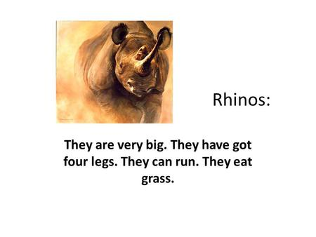 Rhinos: They are very big. They have got four legs. They can run. They eat grass.