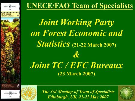 The 3rd Meeting of Team of Specialists Edinburgh, UK, 21-22 May 2007 UNECE/FAO Team of Specialists Joint Working Party on Forest Economic and Statistics.