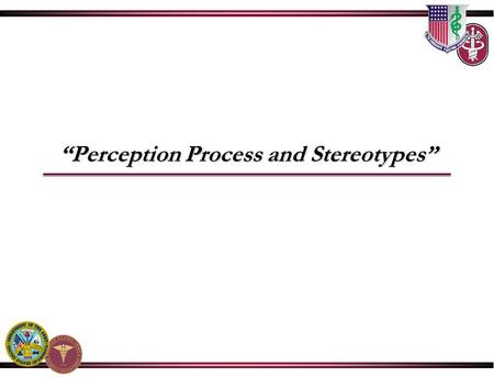 """Perception Process and Stereotypes"". Perceptions Process and Stereotypes."