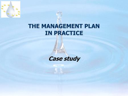 THE MANAGEMENT PLAN IN PRACTICE Case study. RBMP Detailed publication process in the directive...  art. 13: general rules  annex VII: detailed contents.