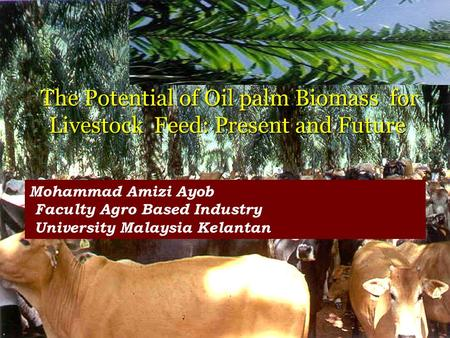 Mohammad Amizi Ayob Faculty Agro Based Industry