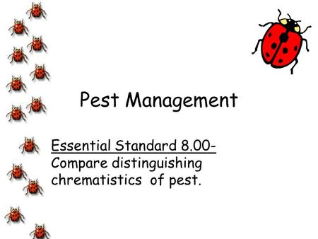 Essential Standard Compare distinguishing chrematistics of pest.