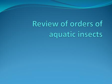Review of orders of aquatic insects