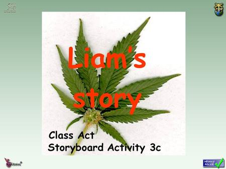 Class Act Storyboard Activity 3c Liam's story. Liam and Salim are best mates. One weekend they spent the day hanging out with some new friends. They were.