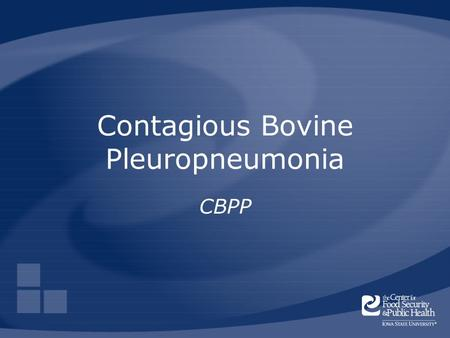 Contagious Bovine Pleuropneumonia CBPP. Center for Food Security and Public Health Iowa State University 2006 Overview Cause Economic impact Distribution.