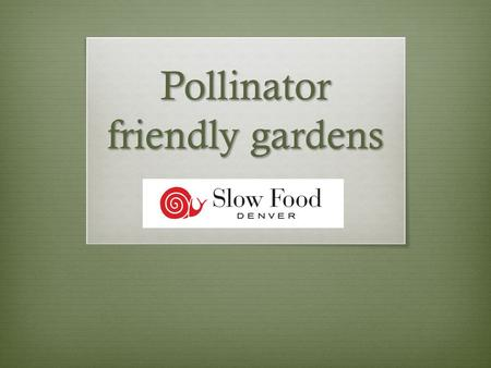 Pollinator friendly gardens. Suggested Plants  Native perennial flowering plants  Herbs  Fruit trees or flowering trees  Annual weeds and flowers.