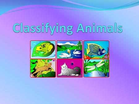 Animals can be classified into six groups Six Classes of Animals MammalsReptiles Amphibians BirdsFish Anthropods.