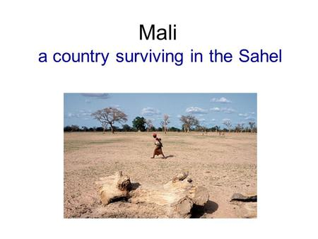 Mali a country surviving in the Sahel. Mali was a powerful African kingdom during the 1300s.