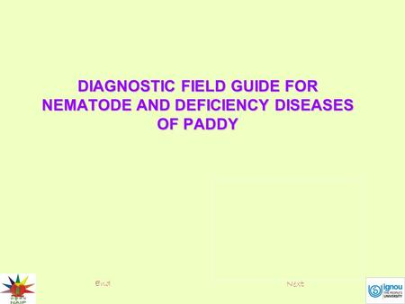 DIAGNOSTIC FIELD GUIDE FOR NEMATODE AND DEFICIENCY DISEASES OF PADDY End Next.