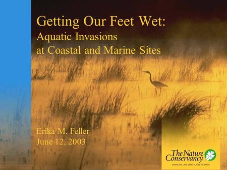 Getting Our Feet Wet: Aquatic Invasions at Coastal and Marine Sites Erika M. Feller June 12, 2003.