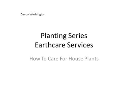 Planting Series Earthcare Services How To Care For House Plants Devon Washington.