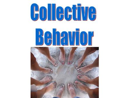 Collective Behavior.