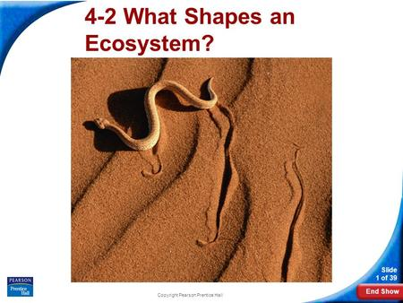End Show Slide 1 of 39 Copyright Pearson Prentice Hall 4-2 What Shapes an Ecosystem?