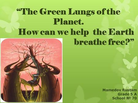 """The Green Lungs of the Planet. How can we help the Earth breathe free?"" Mamedov Rustam Grade 5 A School № 70."