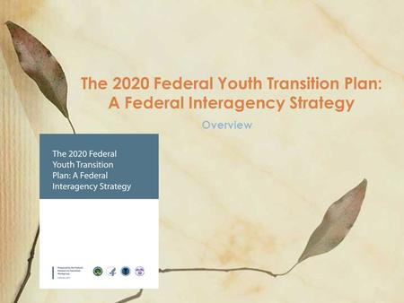 Overview The 2020 Federal Youth Transition Plan: A Federal Interagency Strategy.