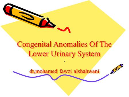 Congenital Anomalies Of The Lower Urinary System dr,mohamed fawzi alshahwani,