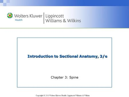 Copyright © 2013 Wolters Kluwer Health | Lippincott Williams & Wilkins Introduction to Sectional Anatomy, 3/e Chapter 3: Spine.
