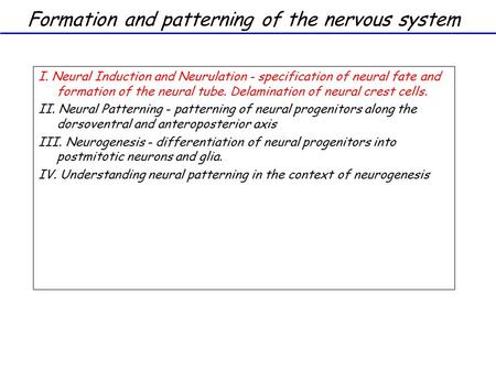 Formation and patterning of the nervous system I. Neural Induction and Neurulation - specification of neural fate and formation of the neural tube. Delamination.