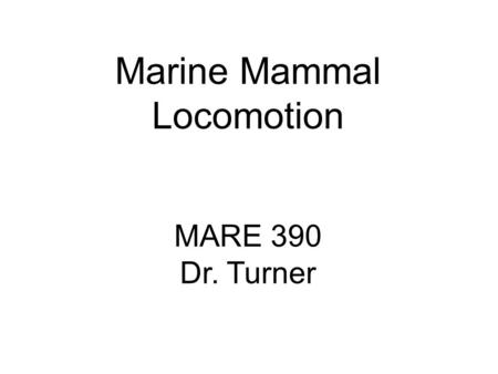 Marine Mammal Locomotion MARE 390 Dr. Turner. Locomotion Swimming by marine mammals is derived from: Paired flipper movements – pinnipeds & sea otters.
