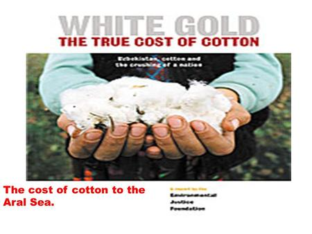 The cost of cotton to the Aral Sea.. Under a communist Soviet government, the decision was made in Moscow to find ways to become self sufficient in cotton.