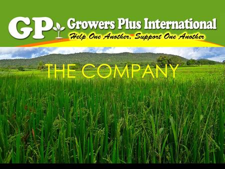 THE COMPANY. GROWERSPLUS INT'L We are a growing Filipino company engaged in distribution of highly competitive products. Our company was founded by a.